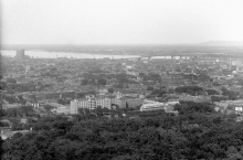 Black-and-white photograph of a cityscape with a river and bridge in the distant background. The immediate foreground contains only the tops of trees.